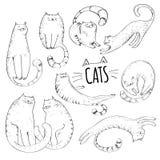 Coleção dos gatos Foto de Stock Royalty Free