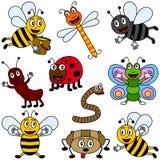 Coleção dos insetos dos desenhos animados Foto de Stock Royalty Free
