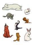 Coleção dos mamíferos do jardim zoológico ilustração royalty free