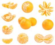 Coleção dos mandarino frescos isolados no branco Imagem de Stock