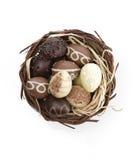 Ovos de chocolate em um ninho imagem de stock