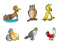 Coleção dos pássaros Imagem de Stock