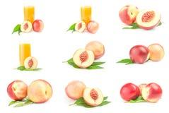 Coleção dos pêssegos maduros suculentos isolados em um entalhe branco Fotografia de Stock Royalty Free