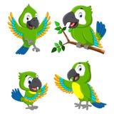 A coleção dos papagaios do verde com a expressão diferente ilustração stock