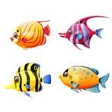A coleção dos peixes de mar pequenos com cor diferente ilustração stock