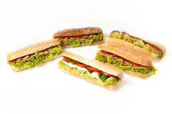 Coleção dos sanduíches. fotografia de stock royalty free