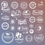 Coleção dos sinais e dos elementos para cosméticos e produtos de beleza naturais ilustração royalty free