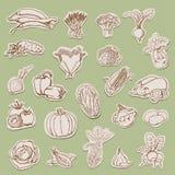 Coleção dos vegetais em etiquetas ilustração do vetor
