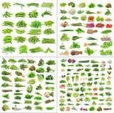 Coleção dos vegetais no fundo branco Fotos de Stock Royalty Free