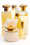 Coleção dourada de produtos da beleza e de higiene Imagem de Stock