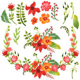 Coleção floral da aquarela Imagens de Stock