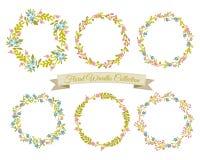 Coleção floral das grinaldas Fotografia de Stock