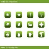 Coleção floral do ícone do vetor Imagens de Stock Royalty Free