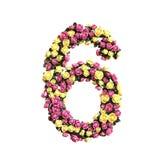 Coleção floral florescida da letra dos números Foto de Stock