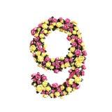 Coleção floral florescida da letra dos números Fotografia de Stock