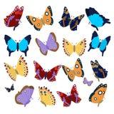 Coleção grande de borboletas coloridas Foto de Stock