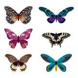Coleção grande de borboletas coloridas Borboletas isoladas no branco Ilustração do vetor Imagem de Stock