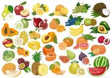 Coleção grande de frutos isolados no fundo branco Fotos de Stock
