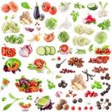 Coleção grande dos vegetais e das especiarias Fotografia de Stock