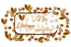 Coleção nova do outono para a Web ou a cópia Imagem de Stock