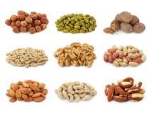 Coleção Nuts Imagens de Stock