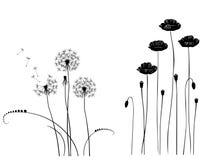 Coleção para desenhistas, vetor da planta selvagem Imagens de Stock