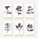 Coleção picante das silhuetas das ervas Entregue a manjericão tirada, orégano, tomilho, majorana, segurelha, folha de louro, cari Fotos de Stock Royalty Free