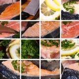 Coleção que cozinha peixes Imagens de Stock Royalty Free