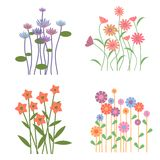 Coleção retro colorida da flor Fotografia de Stock Royalty Free