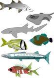 Coleção tropical 1 dos peixes ilustração royalty free