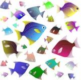 Coleção tropical dos peixes isolada no fundo branco ilustração stock