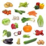 Coleção vegetal foto de stock royalty free
