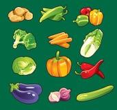 Coleção vegetal Imagens de Stock