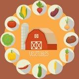 Coleção vegetal dos ícones Fotografia de Stock Royalty Free