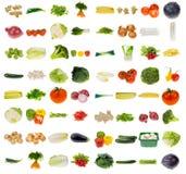 Coleção vegetal enorme Foto de Stock