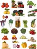Coleção vegetal enorme Imagem de Stock Royalty Free