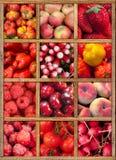 Coleção vermelha do alimento fotos de stock royalty free