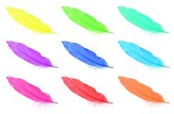 Coleções coloridas das penas isoladas no branco Foto de Stock