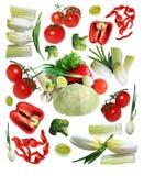 Coleções dos vegetais Fotos de Stock Royalty Free