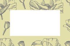 Cole??o de flores e de plantas tiradas m?o botany jogo Flores do vintage Ilustração preto e branco ao estilo de ilustração stock