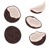 Cole??o de frutas tropicais cocos no estilo liso isolados no fundo branco ilustração stock