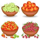 cole??o Recolheu uma colheita rica em umas bacias completas do fruto suculento maduro Uvas frescas, cerejas, maçãs, morangos, uma ilustração do vetor