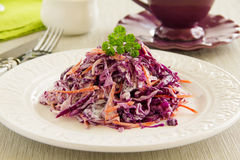 Cole Slaw Salad lizenzfreie stockfotos