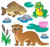 Colección 1 de la fauna del río Imagen de archivo libre de regalías