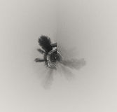 Colección abstracta Imagen de archivo libre de regalías