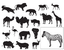 Colección africana de los animales stock de ilustración