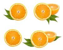 Colección anaranjada de la fruta Imagen de archivo