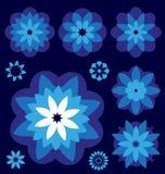 Colección azul del vector de las flores Imágenes de archivo libres de regalías
