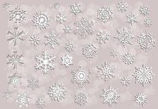Colección blanca de los copos de nieve en fondo ligero Fotos de archivo