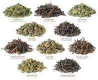 Colección china del té del oolong imagen de archivo